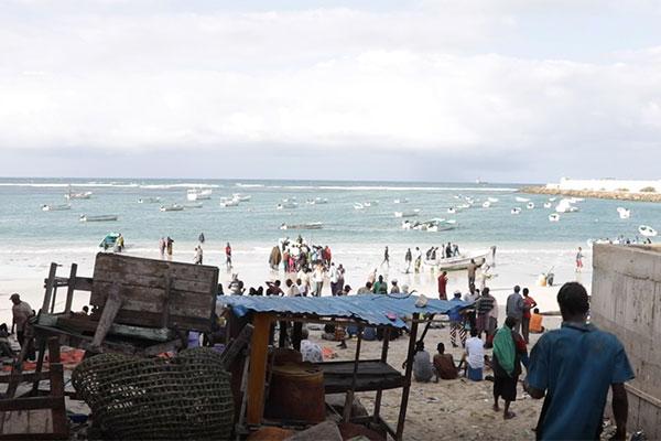 Mogadishu fish market